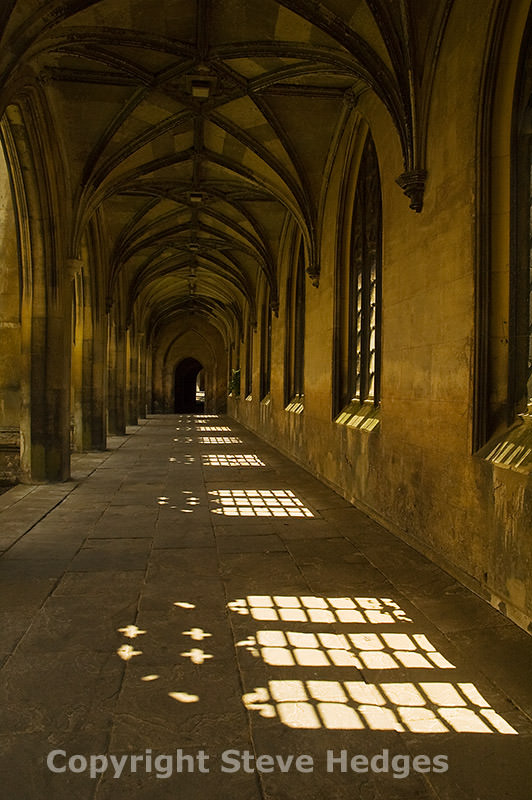 Cambridge Photography by Steve Hedges