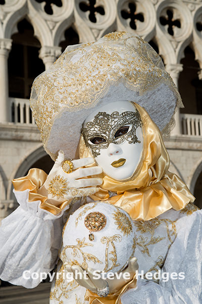 Venice Carnival Photography by Steve Hedges