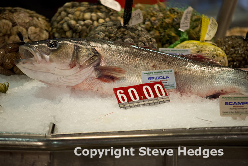 Venice Fish Market Photography by Steve Hedges