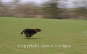 Intermediate Photography Course from Steve Hedges in Essex